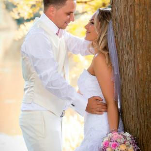 Frischgebackenes Ehepaar am Baum
